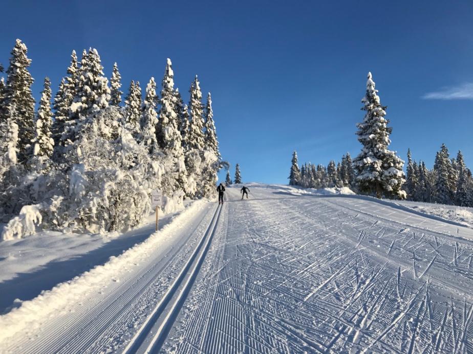 Scandinavian Winter Start